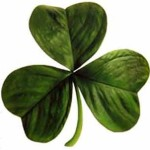 10 Things I Learned About St. Patrick's Day