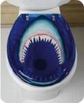 Shark Toilet Seat