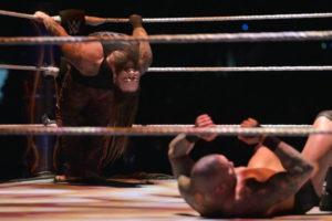 WrestleMania 33 - Wyatt vs Orton